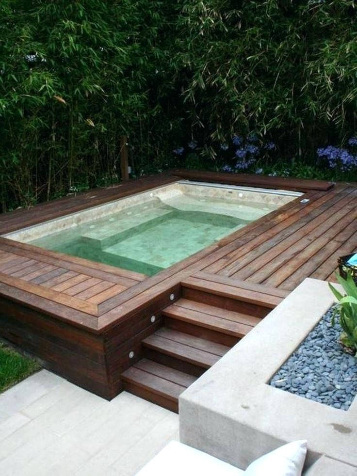 Above Ground Spa Pool Best Swim Spa Ideas Images On Small Swimming