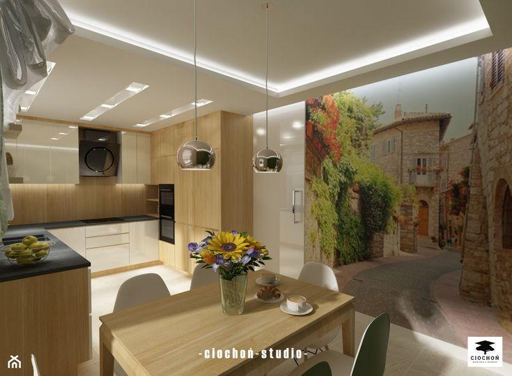 Dom w Łańcucie - zdjęcie od Ciochoń-Studio - Kuchnia - Styl Nowoczesny - Ciochoń-Studio