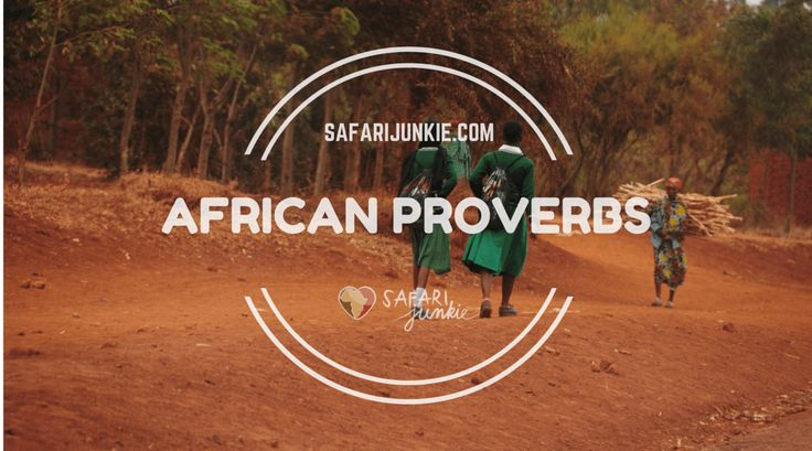 """The Wisdom of African Proverbs Here's a list of African proverbs from around the continent. Some are known to come from specific tribes, ethnic groups, or African countries, and others have an unknown source and are listed simply as """"African proverbs."""" Some proverbs are romantic, some thought provoking and some perhaps a bit lost in translation."""