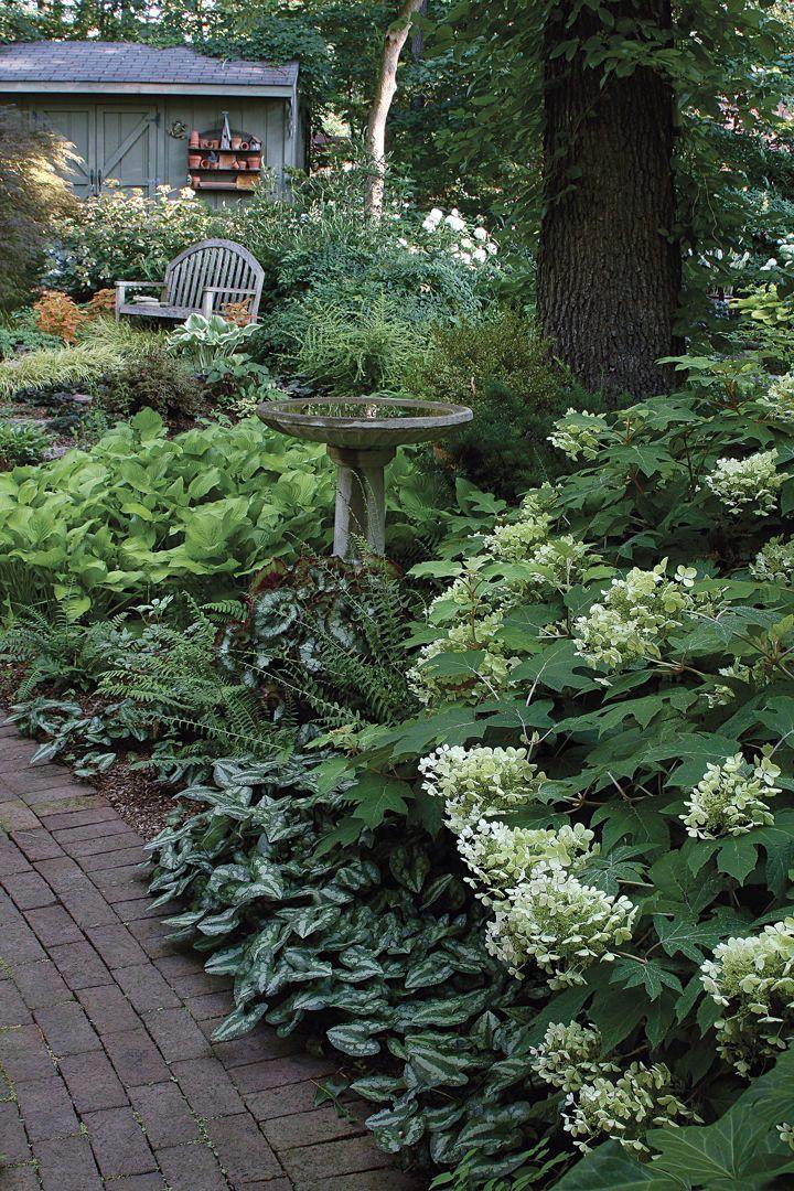 Motivating Shade Garden Ideas In 2020 Beautiful Gardens Cottage Garden Design Cottage Garden
