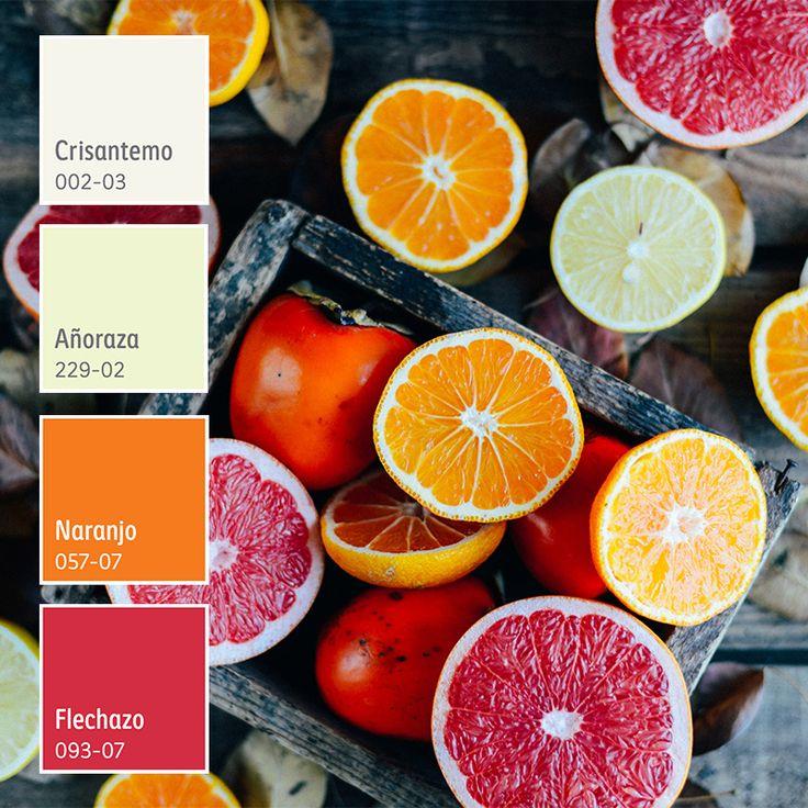Si tu hogar necesita energía, entonces los tonos cálidos intensos son para ti. ¡Descubre más! Color Interior, Colorful Interiors, Pantone, Fruit, Room, Beauty, Ideas, Home Decor, Home