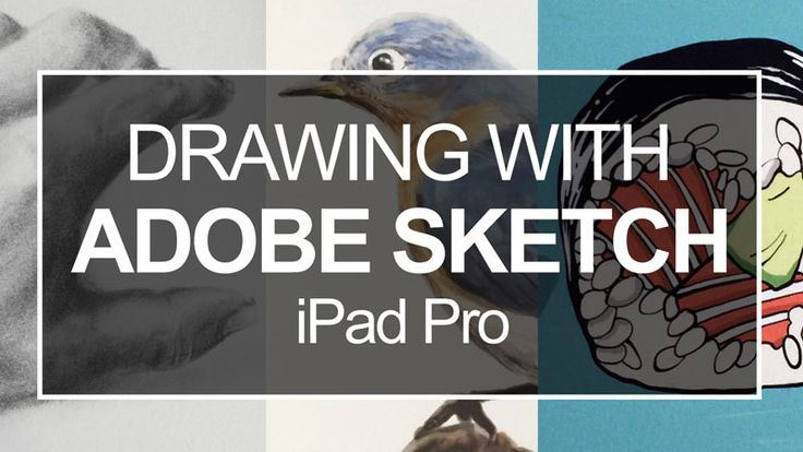 how to download brushes on ipad adobe sketch