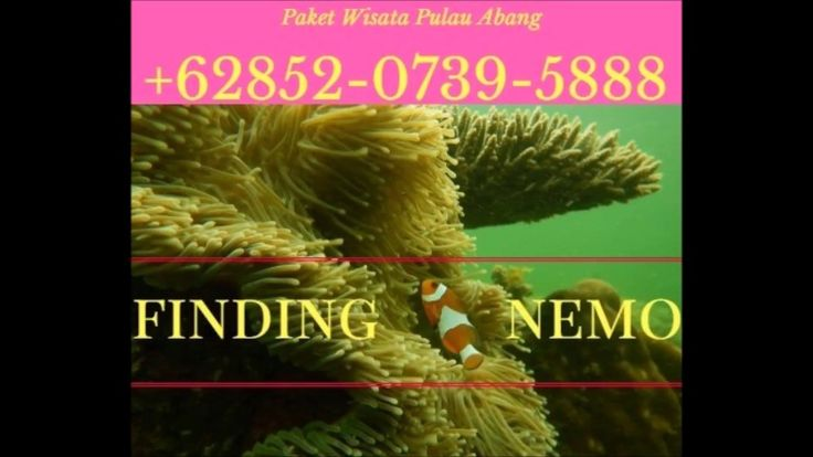 Pulau Abang Batam Kepri Kepulauan Riau 085207395888