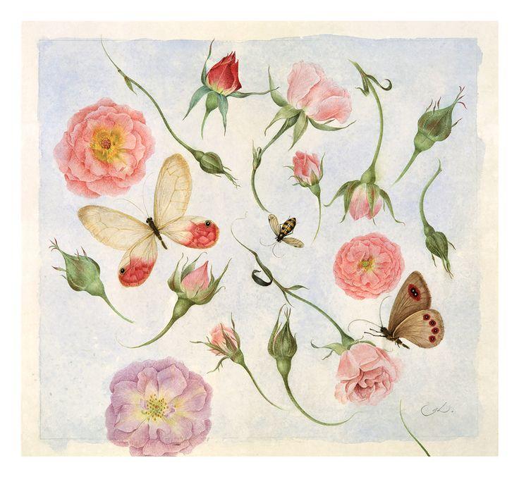 Blossoms and Butterflies // Gertrude Hamilton