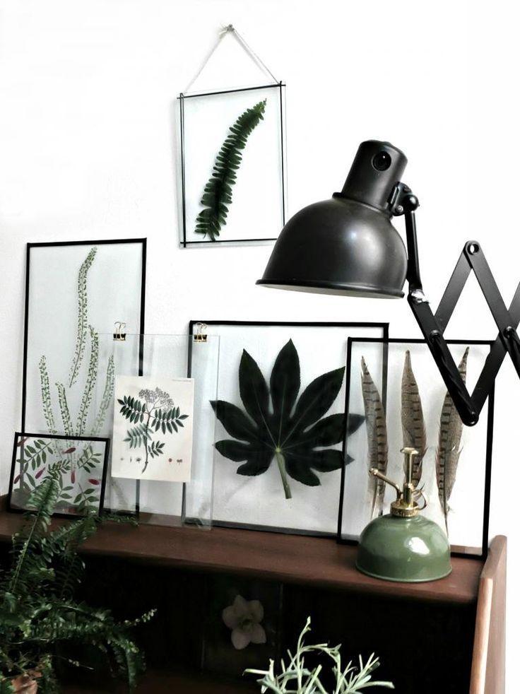 En af året store tendenser i boligen er planter – i alle afskygninger. Ligeledes er transparente billedrammer blevet et must have (f.eks. dem fra danske Moebe e