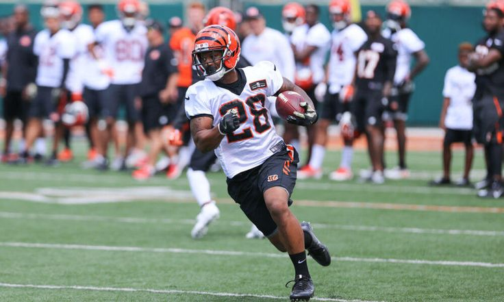 Should Joe Mixon be higher on Bengals depth chart? = Fantasy football owners of Cincinnati Bengals talented rookie running back Joe Mixon couldn't have been happy when they saw team depth chart released on Tuesday. Mixon, a projected starter heading into the 2017 season, was.....