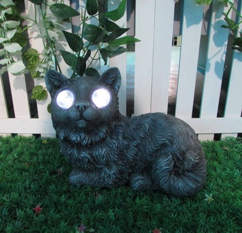 Ever heard of the term Cats Eyes... This brings a new meaning to it....This summer may just be Catastrophic!!