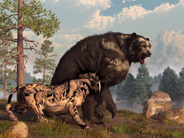Short-faced Bear and Saber-Toothed Cat by *deskridge on deviantART