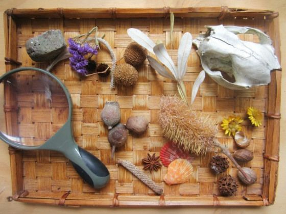 nature discovery tray reggio activities for toddlers an everyday story Loose Parts for Little Ones