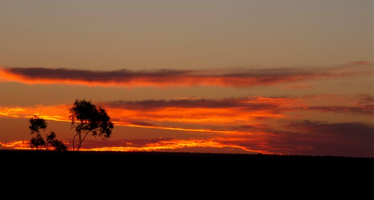 SUNSET AT LIGHTNING RIDGE, NSW, AUSTRALIA - Great spot for #sunsetphotography.  A truly iconic Australian destination