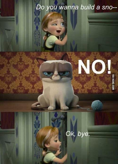 Do you want to build a snowman ? Grumpy cat - no... Okay bye - Frozen humor