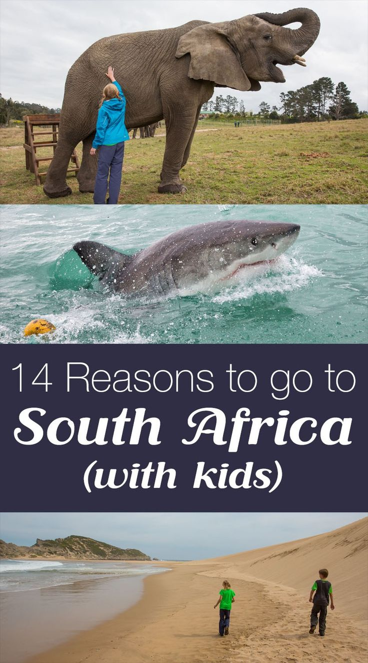 14 Reasons Why You Should Visit South Africa (with Kids)