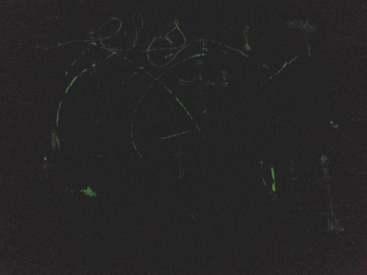 "H5N1 (dark) 2007 36"" x 30"" Acrylique, os et médium phosphorescent sur toile Acrylic, bones and glow-in-the-dark medium on canvas"