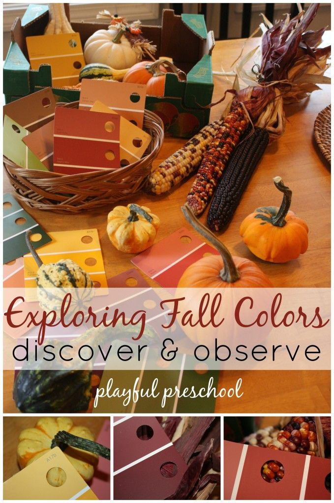 Exploring Fall Colors Playful Preschool - Activities and crafts to explore a fall theme with young children. A great way to teach colors for art and craft projects.