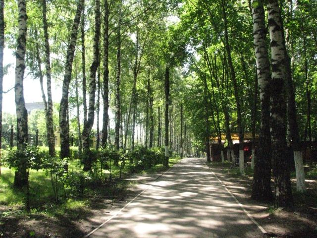 Peaceful Switzerland Park in Nizhny Novgorod, Russia. This park is an oasis in the city with an abundance of natural beauty.