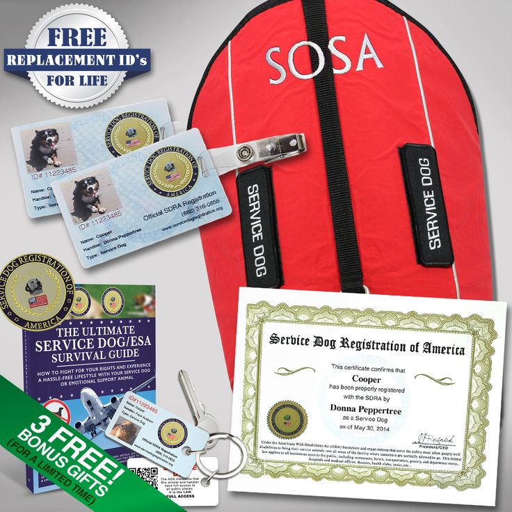 Products Archive Service Dog Registration of America