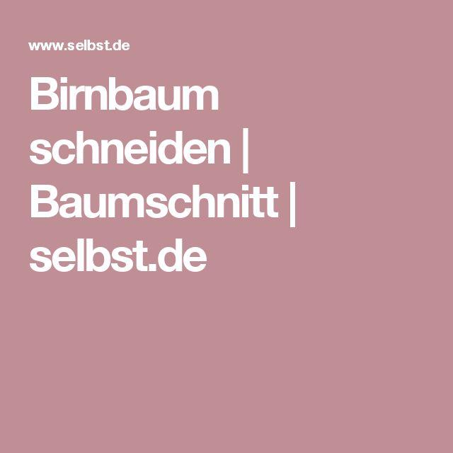 Birnbaum schneiden   Baumschnitt   selbst.de