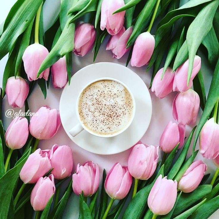 воздушных картинки доброе утро с тюльпанами большинстве