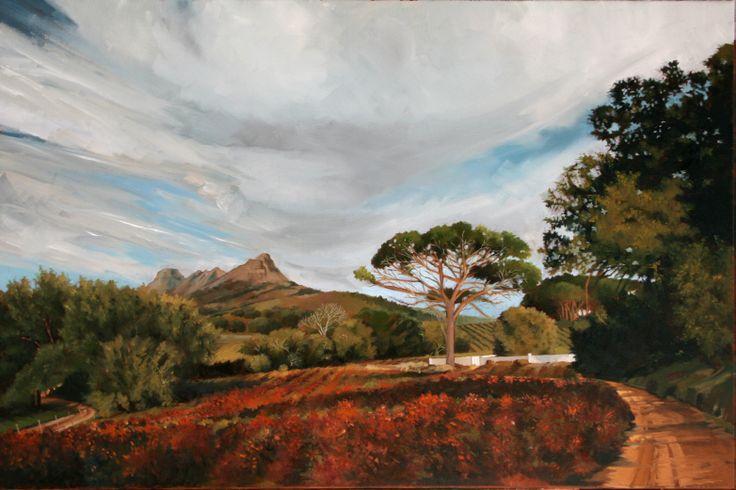 Autumn in the Cape vineyards. Location Stellenbosch Western Cape.