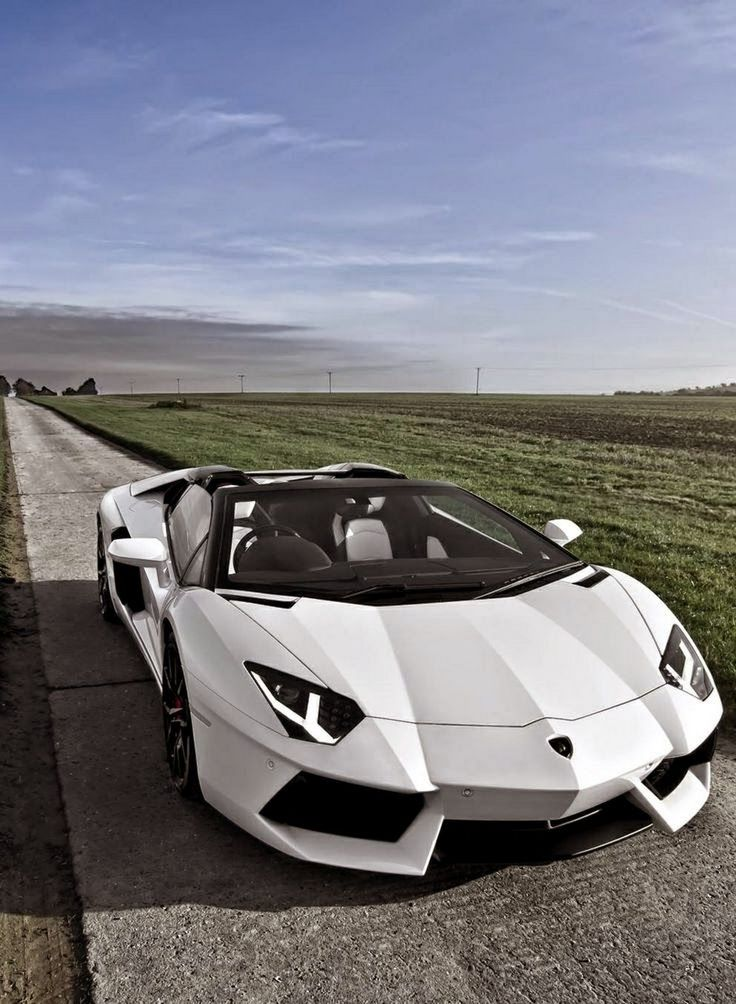 The #Lamborghini #Aventador Roadster is the most extraordinary #car in the illustrious 50-year history of Lambo - Used Engines For Sale - Google+