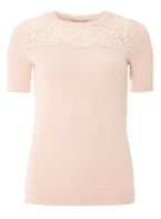 Womens Petite Pink Lace Knitted T-Shirt- Pink