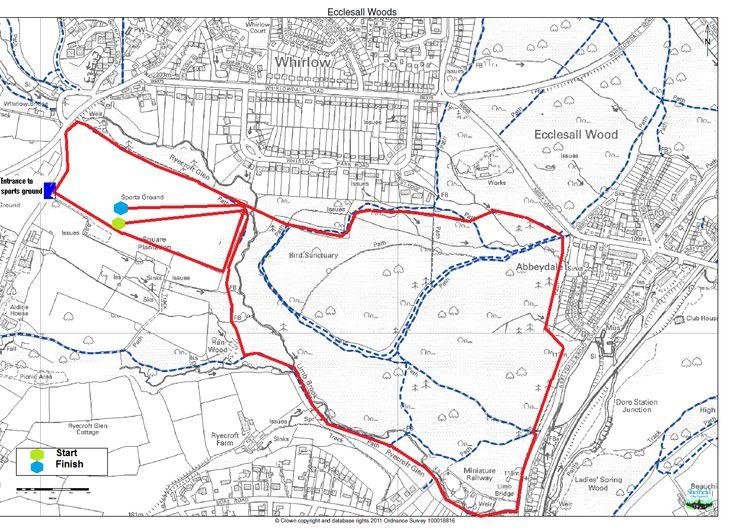 Carlton Palmer 10k Route