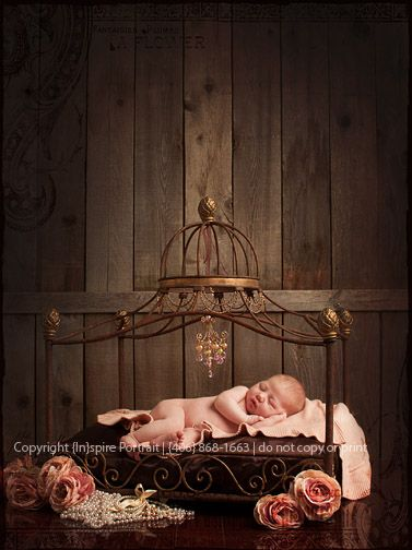 newborn princess portrait in a iron bed
