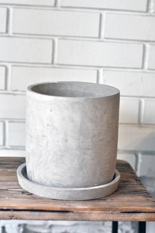 セメントポットM - 観葉植物と鉢がそろぞれ選べるグリーンショップ OSLO