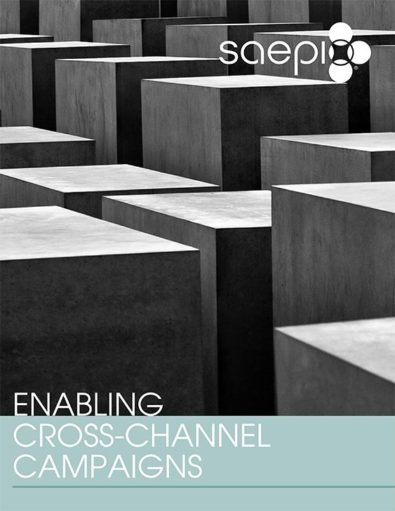 Today's marketing environment challenges marketers like never before. Distributed marketing is more complex. This guide is designed to help identify the impact that connecting with today's customers can have and provide background on how to make this a reality. http://info.saepio.com/Enabling-Cross-Channel-Campaigns.html