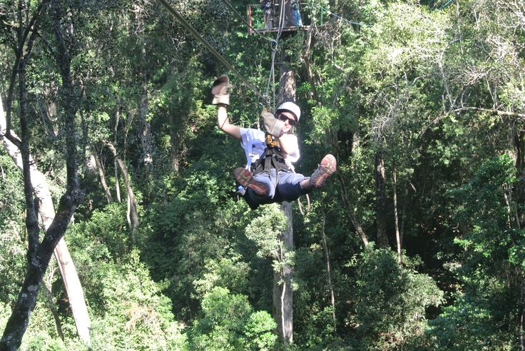 Ziplining i Tsitsikama skogen utanför Plettenberg Bay #Cape #Town #Kapstaden #South #Africa #Sydafrika #Travel #Resa #Resmål #Afrika #Vacation #Semester #Adventure #Äventyr #Zipline #Ziplining #Tsitsikama #Plettenberg #Bay #PlettenbergBay