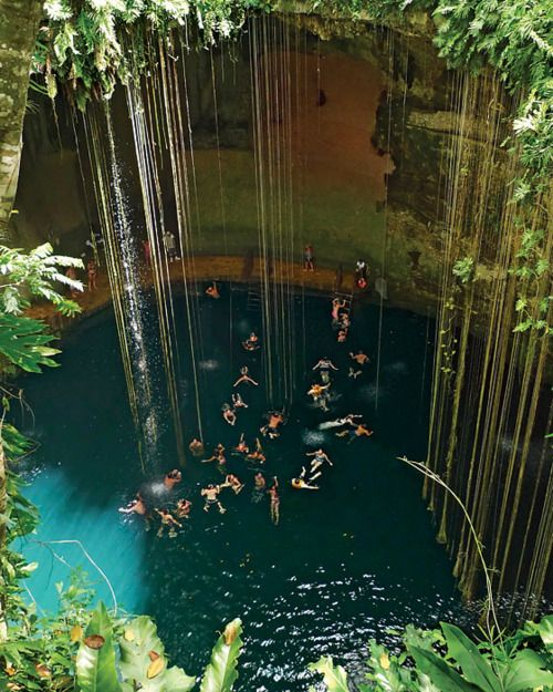 Bucket List item... swim in a pool under a water fall ... Gran Cenote, Tulum, Mexico