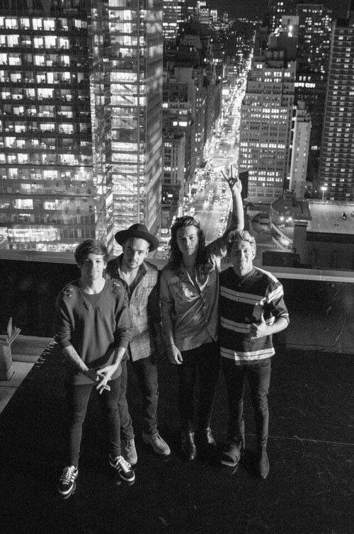 """one direction>>> I can imagine Harry yelling, """"hello!  As you can see... We're on top of a roof."""""""