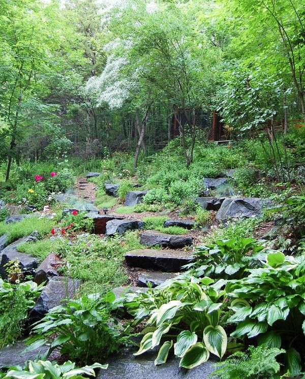 Landscaping Ideas For Shady Hillside : Hillside landscape designs garden ideas
