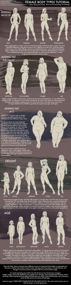 Female Body Types Tutorial by Phobos-Romulus on DeviantArt: