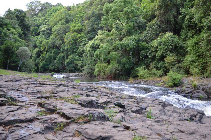 Short walk through the forest to Gardner's Falls #spicersretreats #spicerstamarind