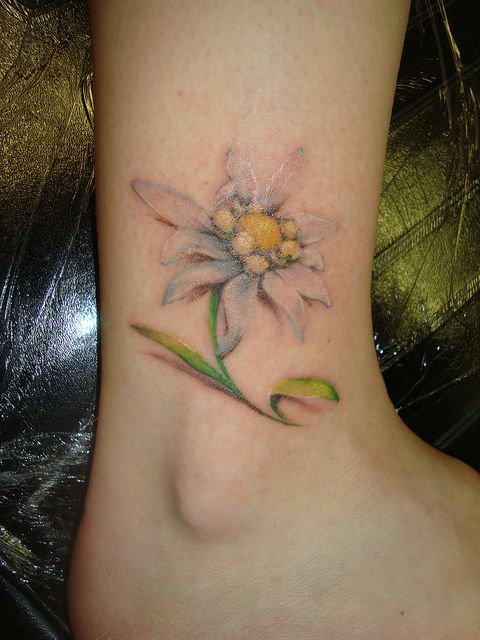 Edelweiss tattoo: the austrian flower, means courage..going to get this in black and white in honor of my oma