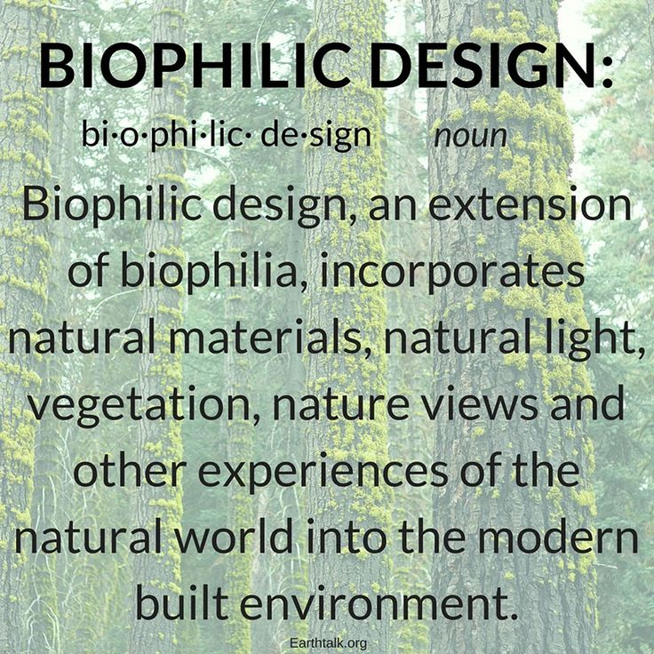 Biophilic Design Explained – And how it's transforming ...