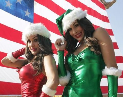 154 best images about nikki and brie bella fav photos on