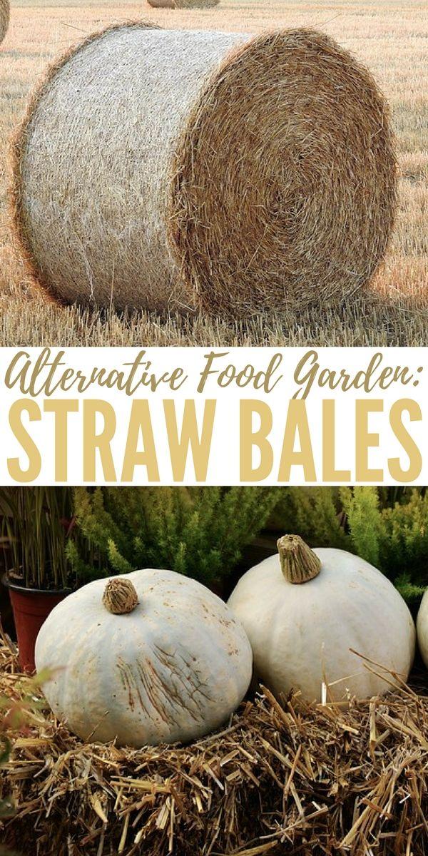 131 Best Images About Garden - Straw Bales Auf Pinterest   Erhöhte ... Gaertnern Strohballen Vorteile Unkrautfrei