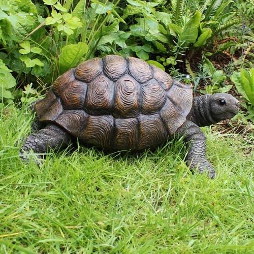 Large Realistic Detailed Resin Tortoise Garden Ornament 400 x 300