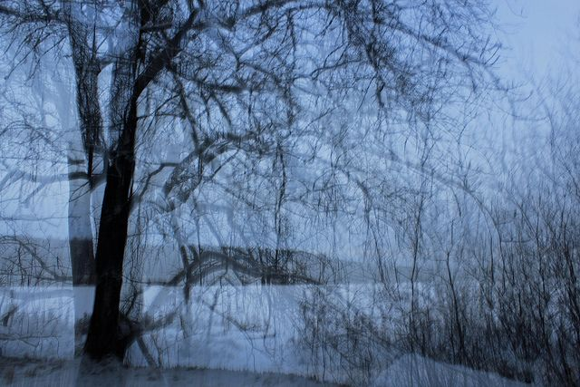 Sleepwalking  (c) Minna Autio