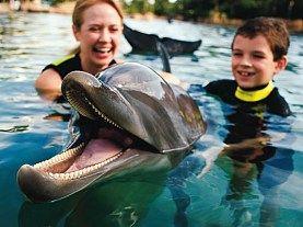 Orlando - Discovery Cove