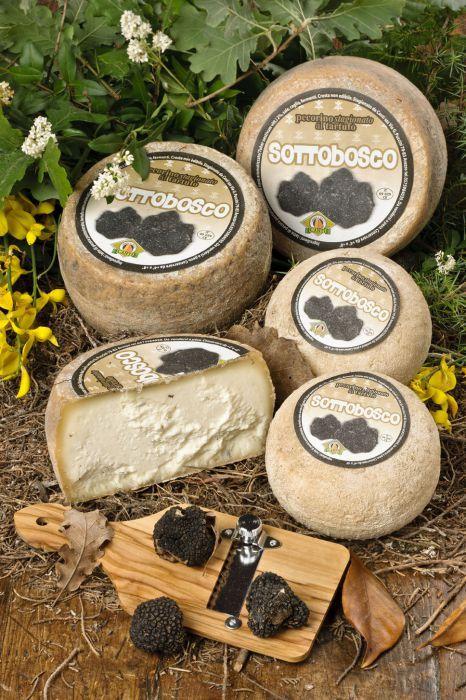 Sottobosco è un pecorino al #tartufo nero dal sapore sempre delicato...   #pecorino #cheese #tartufo #truffle #toscano