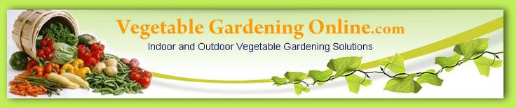 Free Vegetable Garden Plans, Layout, Designs, and Planning Worksheets | Sweet Southern Blue