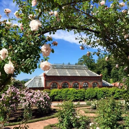 Basilica of Saint Lawrence (Asheville, NC): Address, Phone Number, Church & Cathedral Reviews - TripAdvisor