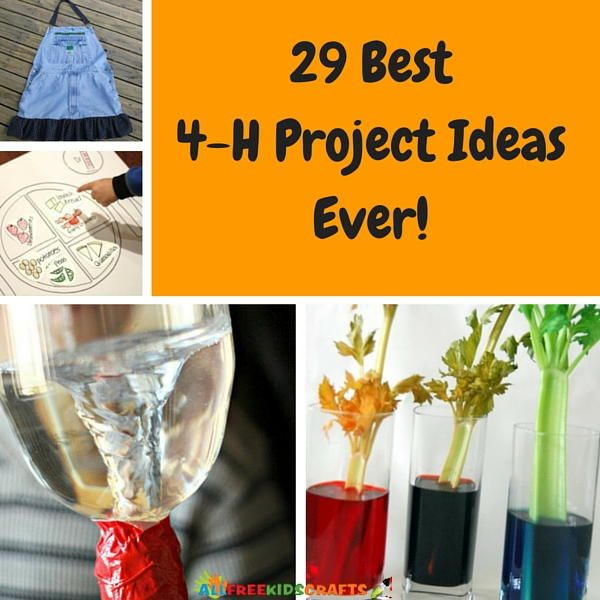 29 Best 4-H Project Ideas Ever | These would also make great science experiments for class.