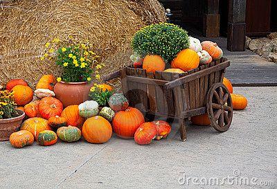 halloween decoratie voor buiten - Google zoeken