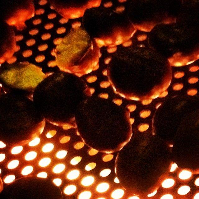 Castanyes al Pallars!!  #Chestnuts in the #Pallarsjussà  #Catalunya #gastronomy