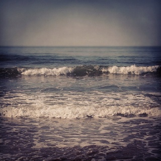 """""""hark, now hear the sailors cry, smell the sea, and feel the sky, let your soul & spirit fly, into the mystic...""""  - Van Morrison"""