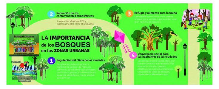 (26) Twitter / Buscar - #infografía